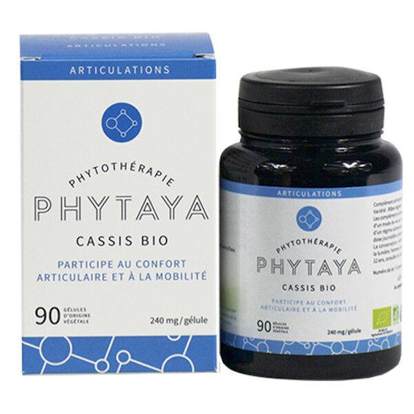 Phytaya Cassis Bio 90 gélules
