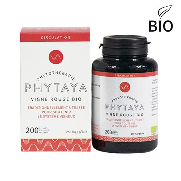 Phytaya Vigne Rouge Bio 200 gélules