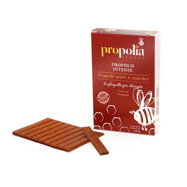 Propolia Propolis Intense Propolis Pure à Mâcher Pré-Découpée 10g