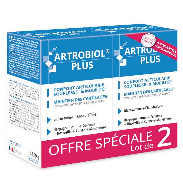 Ineldea Santé Naturelle Artrobiol Plus Lot de 2 x 120 gélules