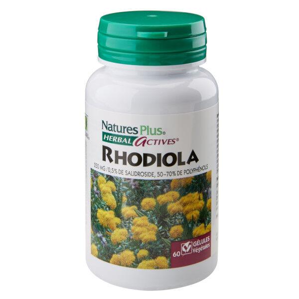 Nature's Plus Rhodiola 60 gélules