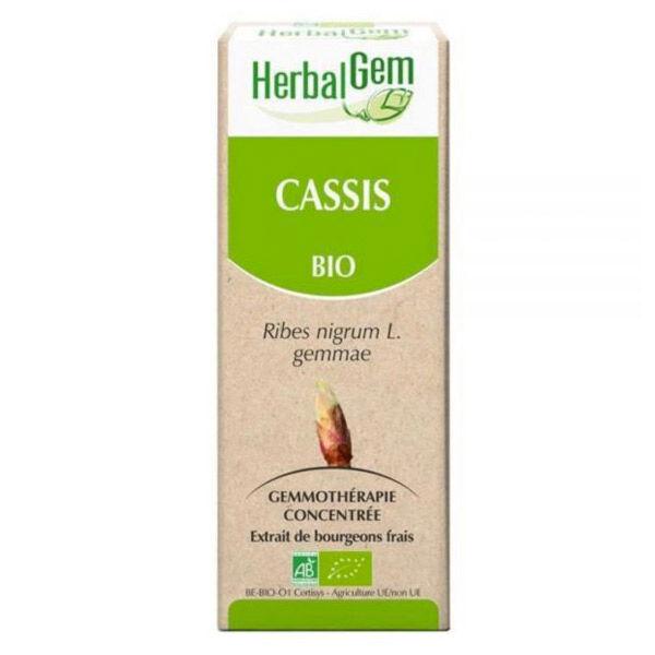 Herbalgem Macérat Concentré Cassis Bio 50ml