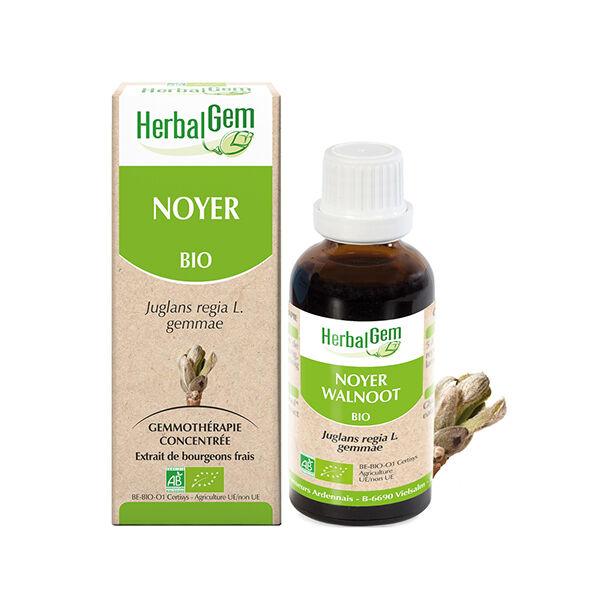 Herbalgem Noyer Bourgeons Bio 30ml