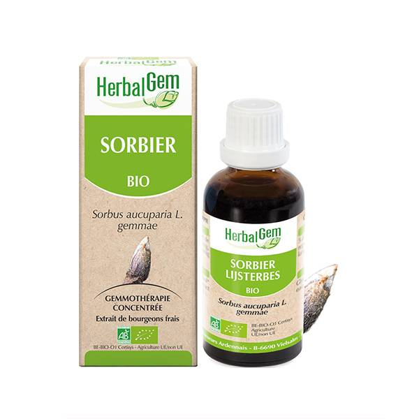 Herbalgem Macérat Concentré Sorbier Bio 30ml
