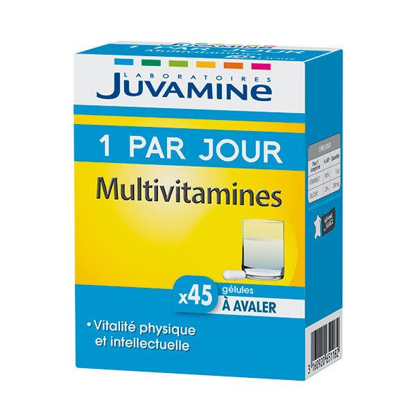 Juvamine 1 Par Jour Multivitamines 45 gélules
