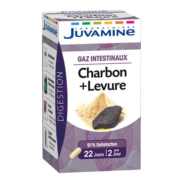 Juvamine Gaz Intestinaux Charbon Levure 45 gélules