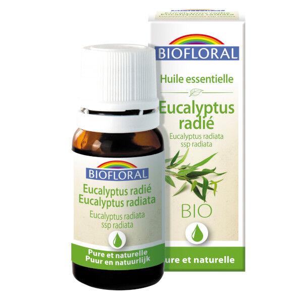Biofloral Huile Essentielle Bio Eucalyptus Radié 10ml