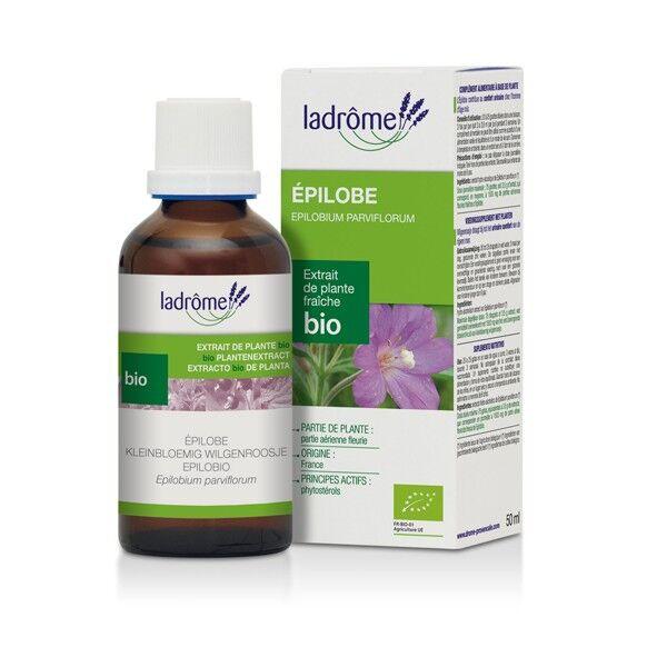 Ladrome Ladrôme Extraits de Plantes Fraîches Bio Epilobe 50ml