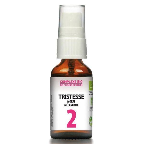 Dr Theiss Complexe Fleurs de Bach N°2 Tristesse 20ml