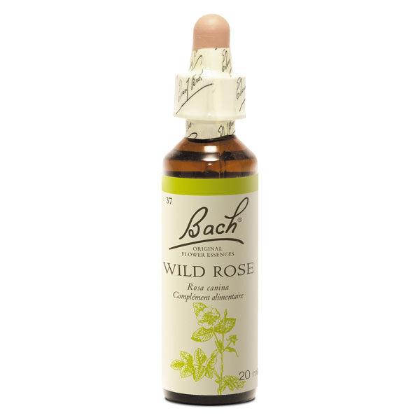 Fleurs de Bach n°37 Wild Rose - Eglantine 20ml