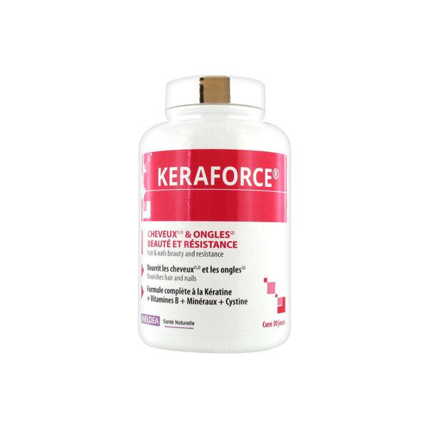 Ineldea Santé Naturelle Keraforce Cheveux et Ongles 90 gélules végétales