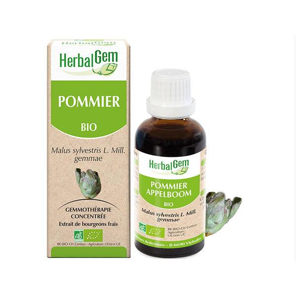 Herbalgem Pommier Macérat Concentré de Bourgeons Bio 30ml