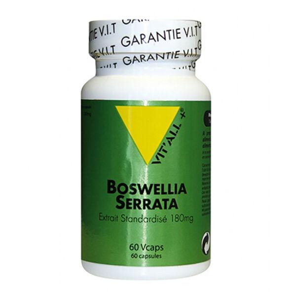Vit'all+ Boswellia Serrata Extrait 180mg 60 gélules végétales