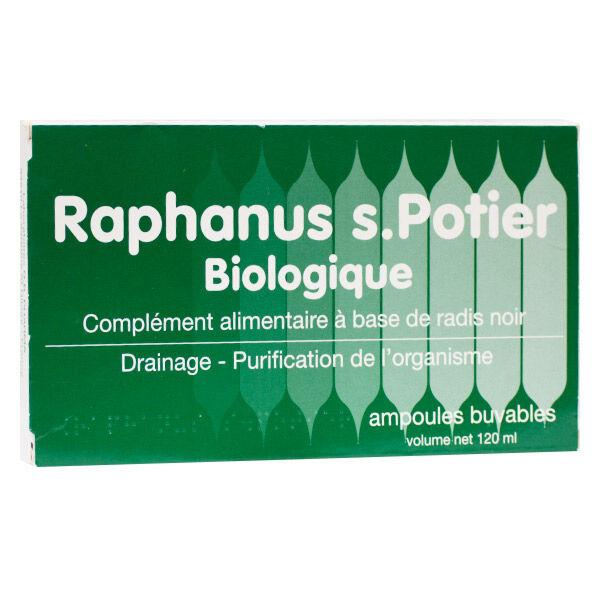 DB Pharma Raphanus S Potier Biologique 12 ampoules buvables