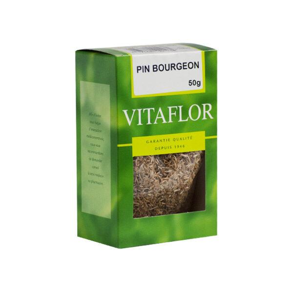 Vitaflor Bio Vitaflor Infusion Pin Bourgeon 50g