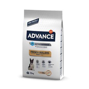 Advance Bulldog Francais Chien 1an et plus 7,5kg