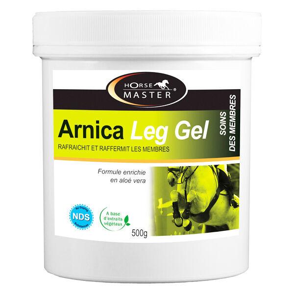 Pommier Nutrition Horse Master Arnica Leg Gel HM 500g