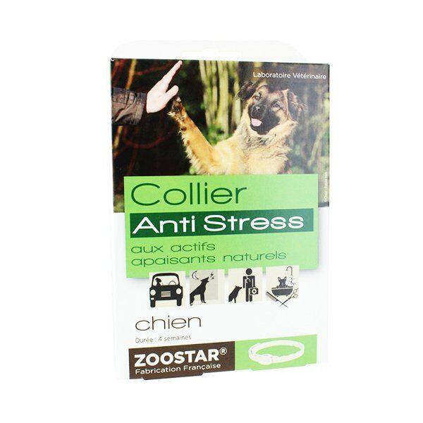Zoostar Collier pour Chien Anti Stress longueur 60cm