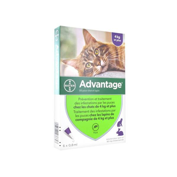 Advantage 80 Chat et Lapin de plus de 4 kg 6 pipettes