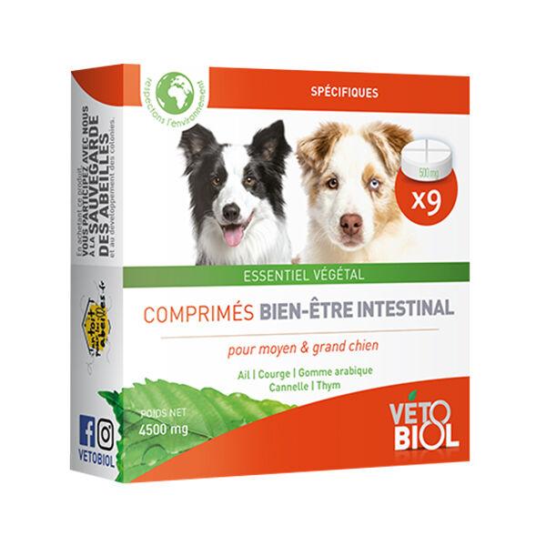 Vetobiol Bien Etre Intestinale Moyen et Grand Chien 10 comprimés
