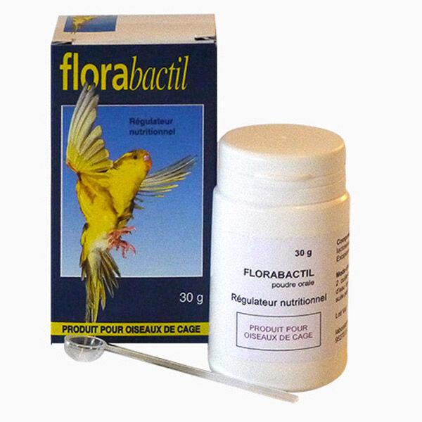Moureau Florabactil Poudre Orale 145g