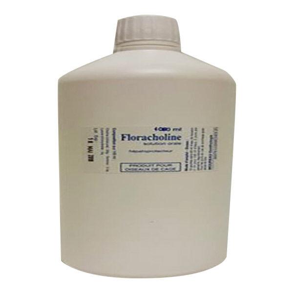 Floracholine Hepatoprotecteur Solution Buvable 1L