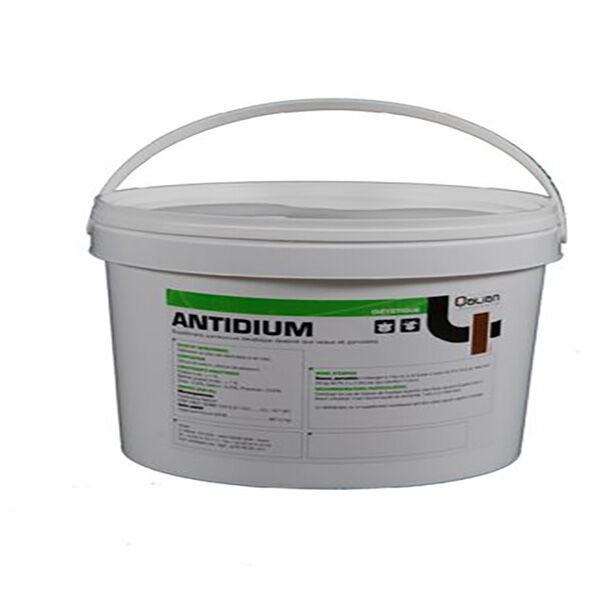 Antidium Argile Lamellaire Electrolytes Poudre Orale 2,5kg