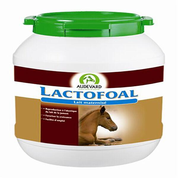 Audevard Lactofoal Lait Poulain Poudre 14kg