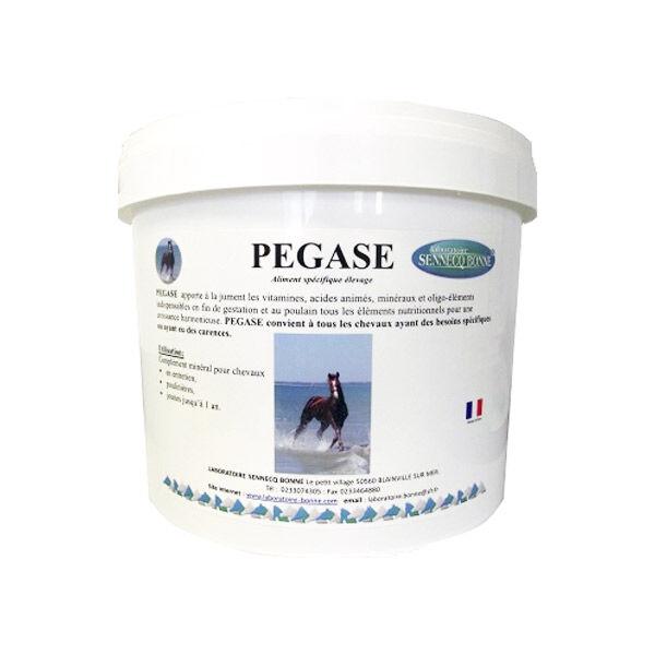 Sennecq Bonne pegase complement alimentaire remineralisant aux extraits de plantes cheval granules seau de 9kg