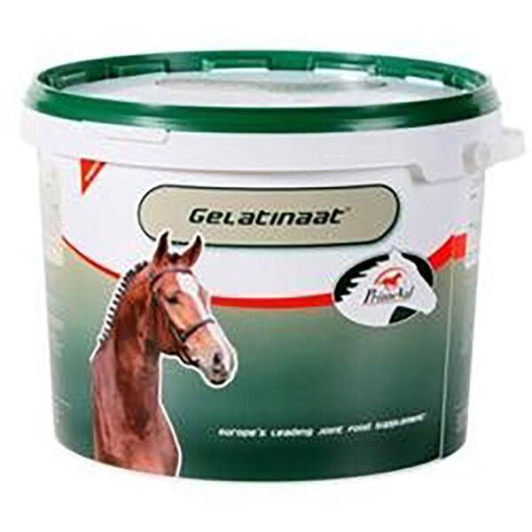 Top Equine Gelatinaat Primeval Supplément Nutritionnel des Articulations Cheval poudre orale 2kg
