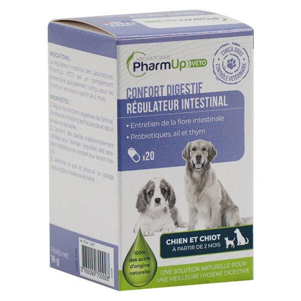 PharmUp Véto Régulateur Intestinal Chiot et Chien 20 gélules