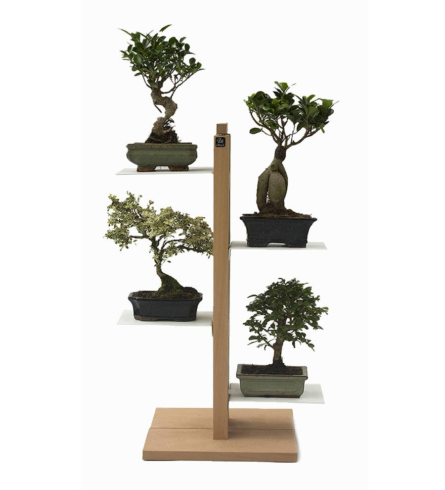 LE ZIE DI MILANO porte-plantes ZIA FLORA (H 66 cm / Naturel - Hêtre massif et acier)