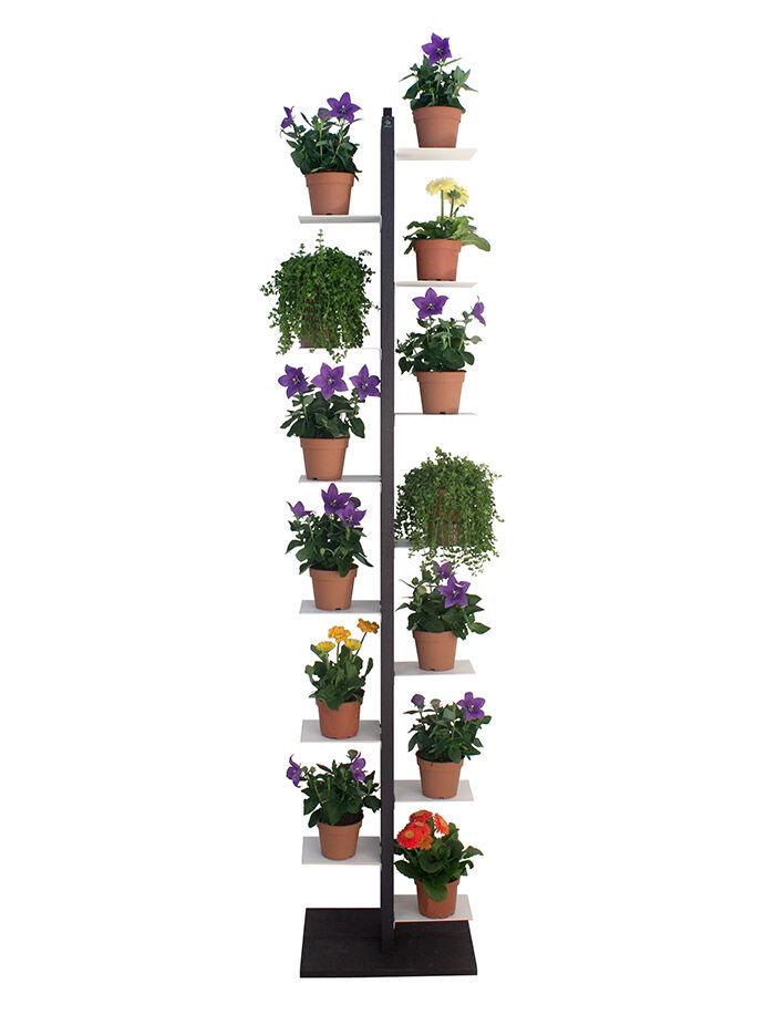 LE ZIE DI MILANO porte-plantes ZIA FLORA (H 204 cm / Noir - Hêtre massif et acier)