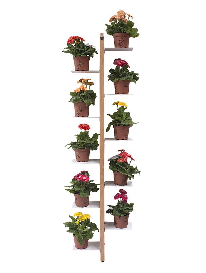LE ZIE DI MILANO porte-plantes sur pied fixé au mur ZIA FLORA (H 156 cm / Naturel - Hêtre massif et acier)