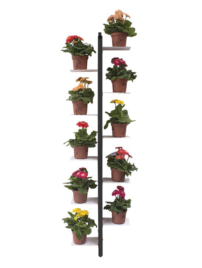 LE ZIE DI MILANO porte-plantes sur pied fixé au mur ZIA FLORA (H 156 cm / Noir - Hêtre massif et acier)