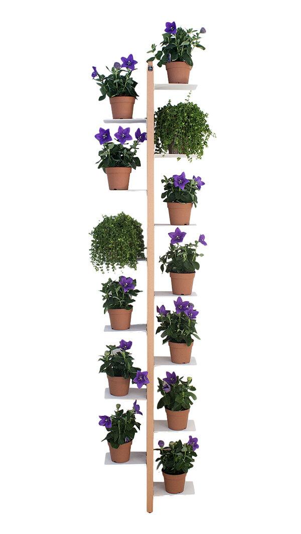 LE ZIE DI MILANO porte-plantes sur pied fixé au mur ZIA FLORA (H 202 cm / Naturel - Hêtre massif et acier)