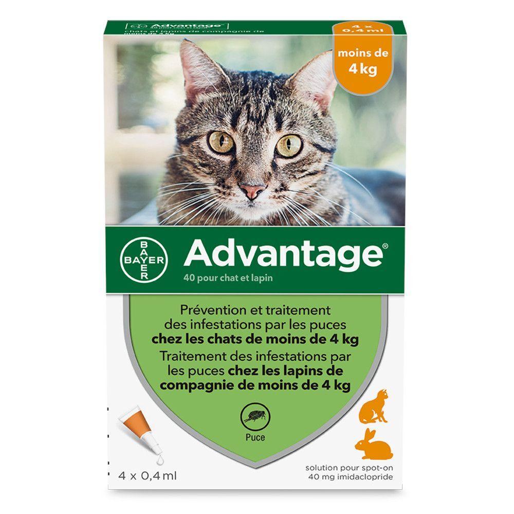 Advantage® 40 pour chat et lapin < 4 kg - 6 mois de protection (6 pipettes)