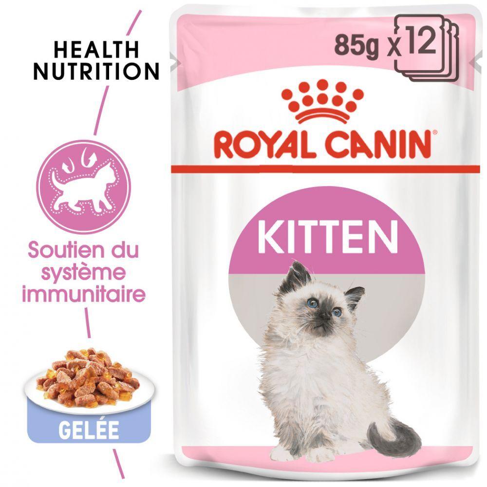 Royal Canin 12x85g Kitten en gelée Royal Canin - Pâtée pour chat