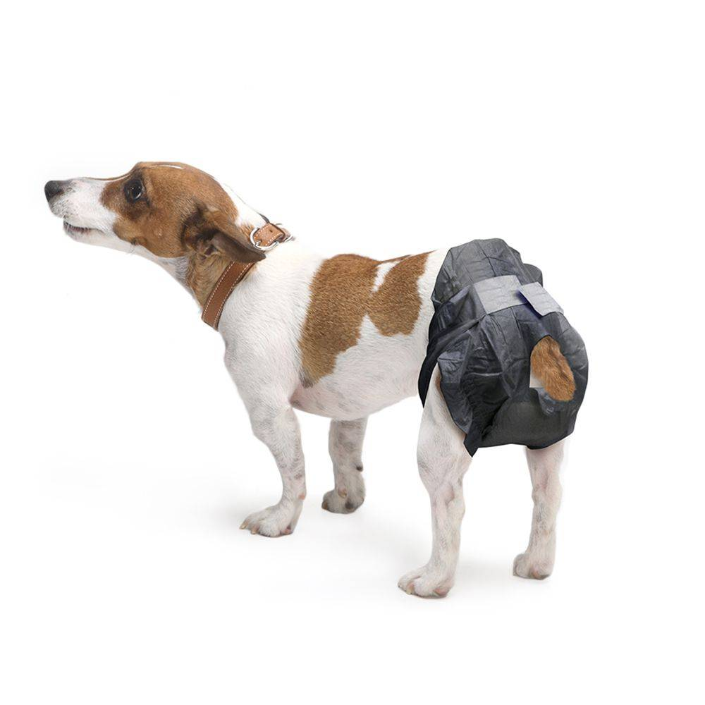 savic Couches jetables Savic Comfort Nappy pour chien - taille 1, 12 couches