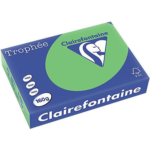 Clairefontaine Papier couleur Clairefontaine A4 160 g/m² Vert Trophee - 250 Feuilles