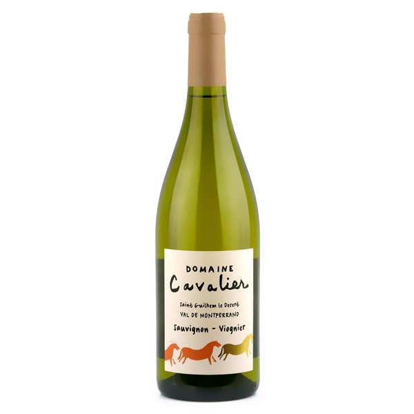 Château de Lascaux Domaine Cavalier Blanc - Vin blanc du Languedoc - 2018 - Bouteille 75cl
