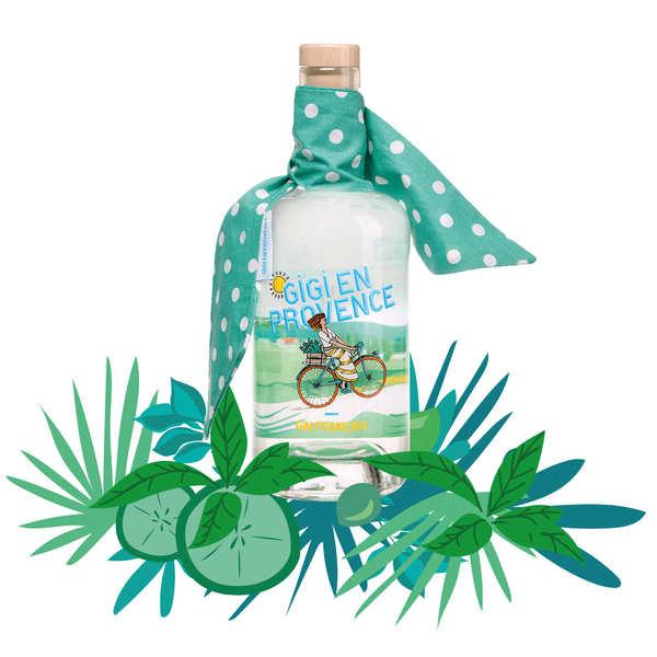 Peyrassol - Maison Astruy Gigi en Provence - Gin français bio 44% - Bouteille 70cl et son foulard vert