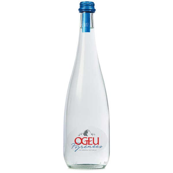 Ogeu Eaux Minérales Ogeu - Eau minérale plate des Pyrénées - Bouteille verre 75cl