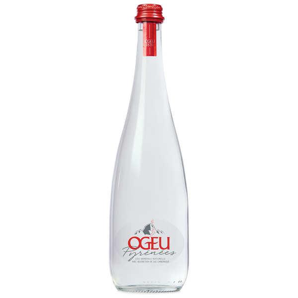 Ogeu Eaux Minérales Ogeu - Eau minérale pétillante des Pyrénées - Bouteille verre 75cl