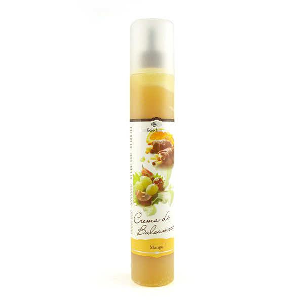 Acetificio Mengazzoli SNC Crème de jus de mangue vinaigré - Bouteille 320g