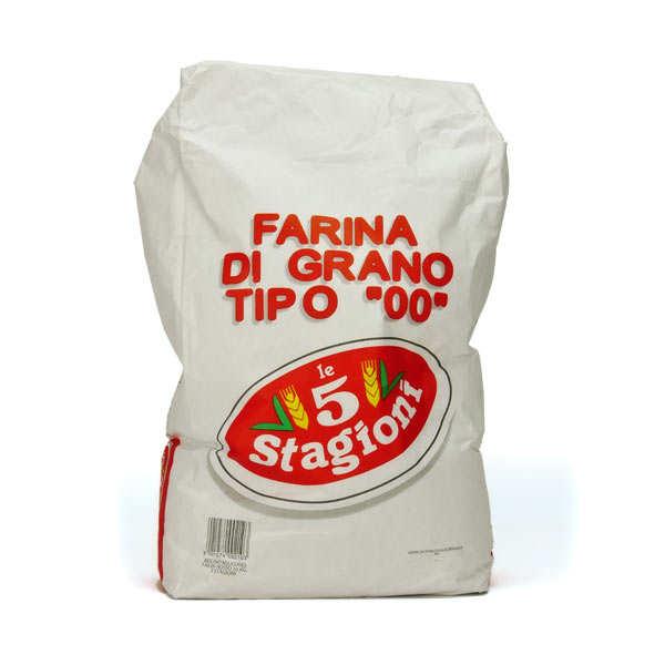 Le 5 Stagioni Farine à pizza italienne Oro W390 type 00 - Sac 10kg