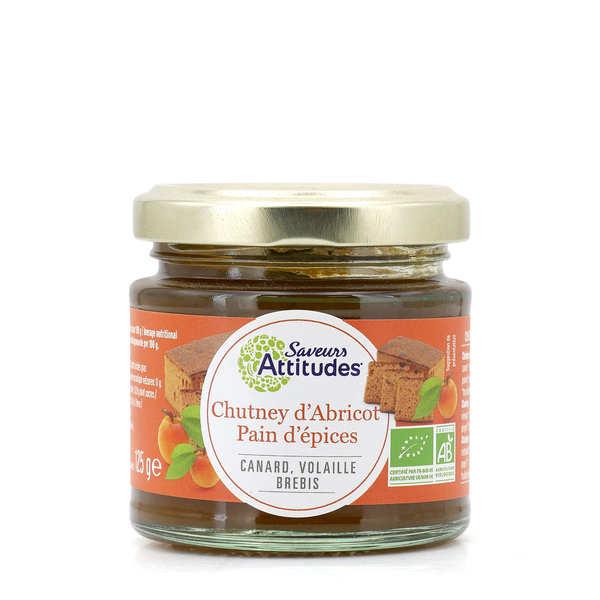 Saveurs Attitudes Chutney abricot et pain d'épices bio - Pot 125g