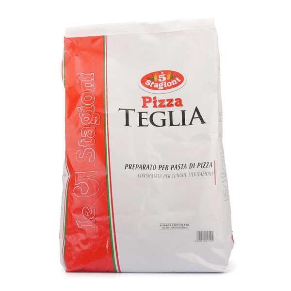 Le 5 Stagioni Pizza Teglia - Mix de farine à pizza pour grandes plaques - Sac 10kg