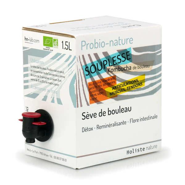 HN-Lab Kombucha de bouleau bio - Souplesse - Bib 1.5L