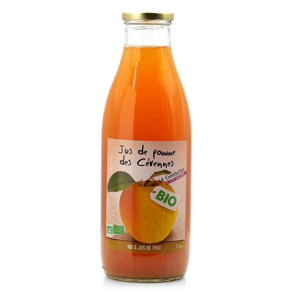 Origine Cévennes Jus de pomme bio des Cévennes - Lot de 3 bouteilles 1L